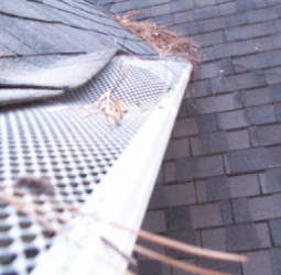 wire-mesh-gutter-covers-from-home-improvement-stores-are-easily-bent-out-of-shape-and-quickly-stop-working