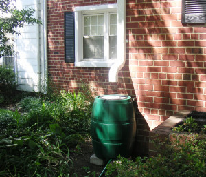 rain barrel, water conservation